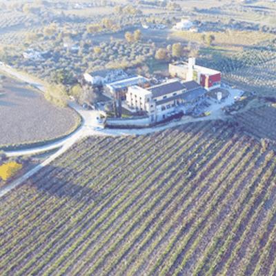 Azienda Agricola Chiusa Grande Winery