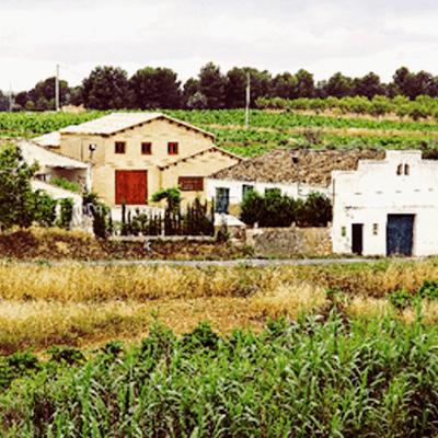 Bodegas Proexa Winery